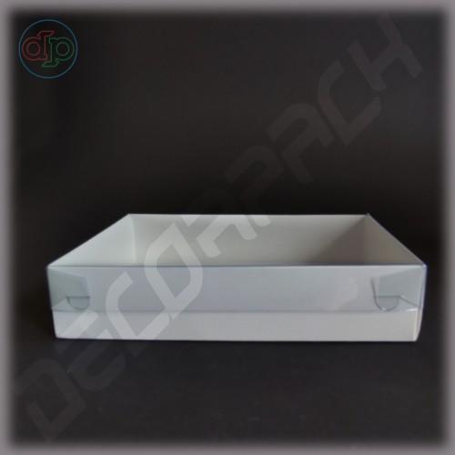 Коробка 195*120*45 мм  (с прозрачной наружной крышкой, высота крышки 35 мм)