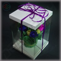 Коробка-аквариум для упаковки подарков 200*200*300 мм белая