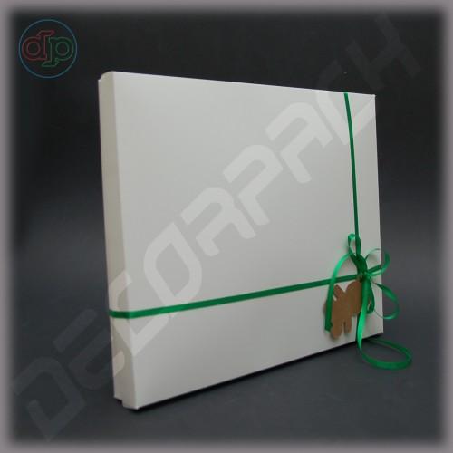 Коробка  350*290*25 мм