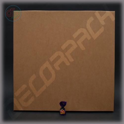 Коробка с глухой крышкой 500*500*44 мм