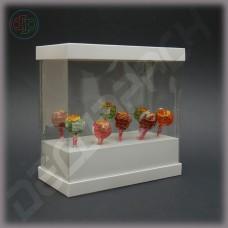 Коробка 200*100*200 мм  (с прозрачными стенками, аквариум)