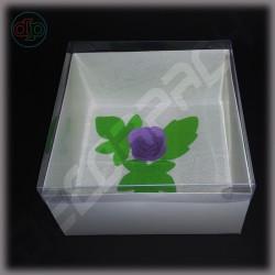 Коробка 200*200*100 мм с прозрачной крышкой