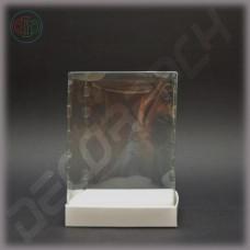 Коробка 160*160*220 мм с прозрачной крышкой-купол