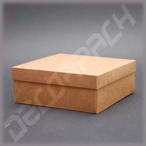 Коробка 200*100*65 мм